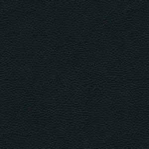 Basic leather_noir