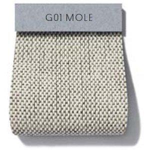 Oxford_ Cat HD2_ G01 Mole