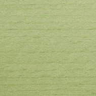 Buche gebeizt_ TP 262 Reed green