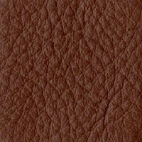Poltrona Frau Leather_P01 006