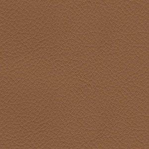 Leather Beta 330