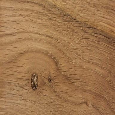 Chêne avec noeuds