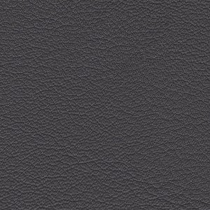 Leather Kasia_ 255