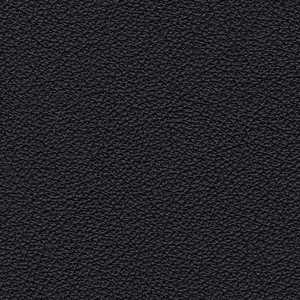 Leather Kasia_ 153
