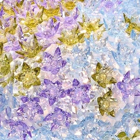 Bloom_ LV/lavanda