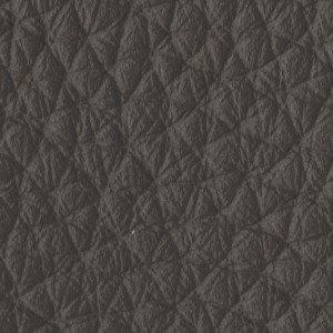 Leather_Cat.A_ Loke 7110