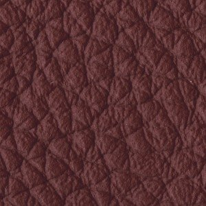 Leather_Cat.A_ Loke 7100