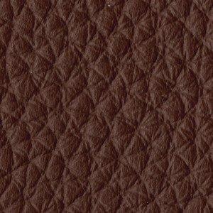 Leather_Cat.A_ Loke 7060