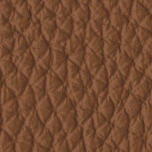Leather_Cat.A_ Loke 7748