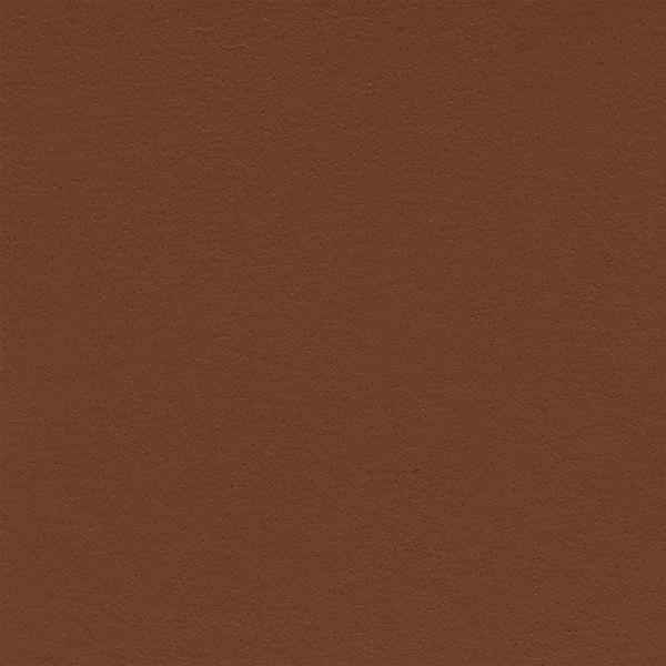 Leather_Cat.2_ En plain 02