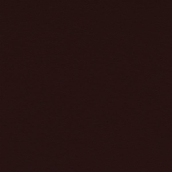 Leather_Cat.2_ En plain 08