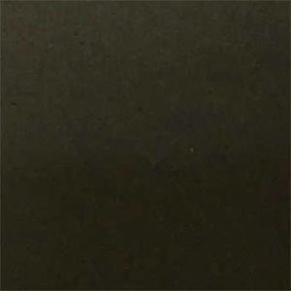 Leather_Cat.2_ En plain 11