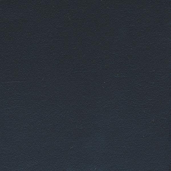 Leather_Cat.2_ En plain 20